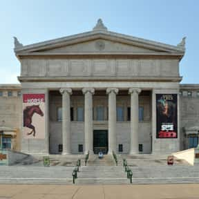 Field Museum of Natural Histor is listed (or ranked) 3 on the list The Best Museums in the United States