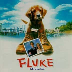 Fluke is listed (or ranked) 23 on the list The Saddest Drama Movies to Watch Drunk