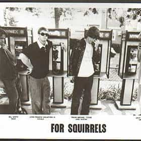 For Squirrels