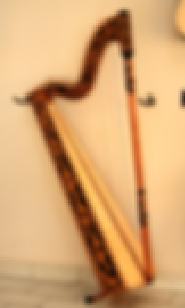 Paraguayan harp is listed (or ranked) 4 on the list Harp - Instruments in This Family