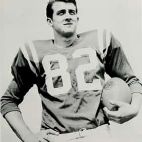 Gary Collins is listed (or ranked) 22 on the list List of Famous Football Punters