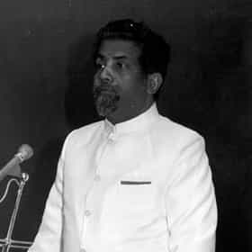 E. C. George Sudarshan