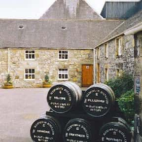 Glen Fiddich is listed (or ranked) 20 on the list The Best Top Shelf Alcohol Brands