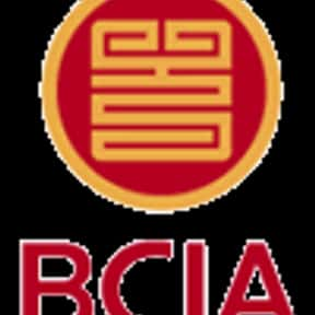 Beijing Capital International  is listed (or ranked) 11 on the list List of Aviation Companies