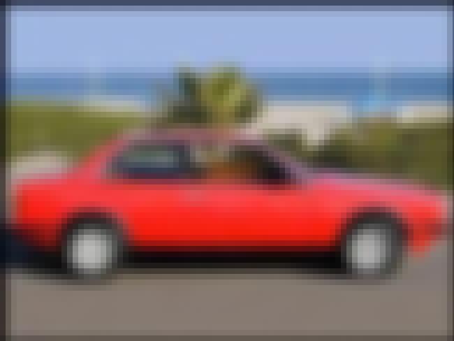 1985 Maserati Biturbo Sedan is listed (or ranked) 2 on the list List of Popular Maserati Biturbos