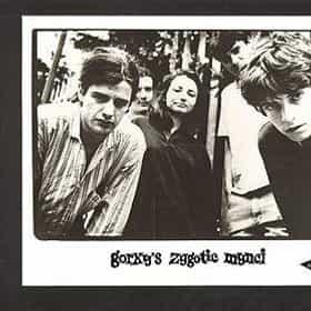Gorky's Zygotic Mynci