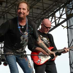 Great White is listed (or ranked) 12 on the list The Best Bands Named After Sea Animals