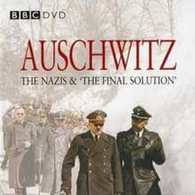 Auschwitz: The Nazis and the 'Final Solution'