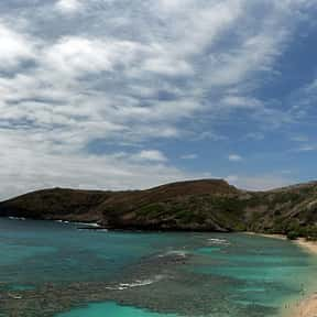 Hanauma Bay is listed (or ranked) 4 on the list The Best Beaches in Hawaii