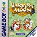 Harvest Moon 3 GBC is listed (or ranked) 19 on the list List of All Console Role-playing Games