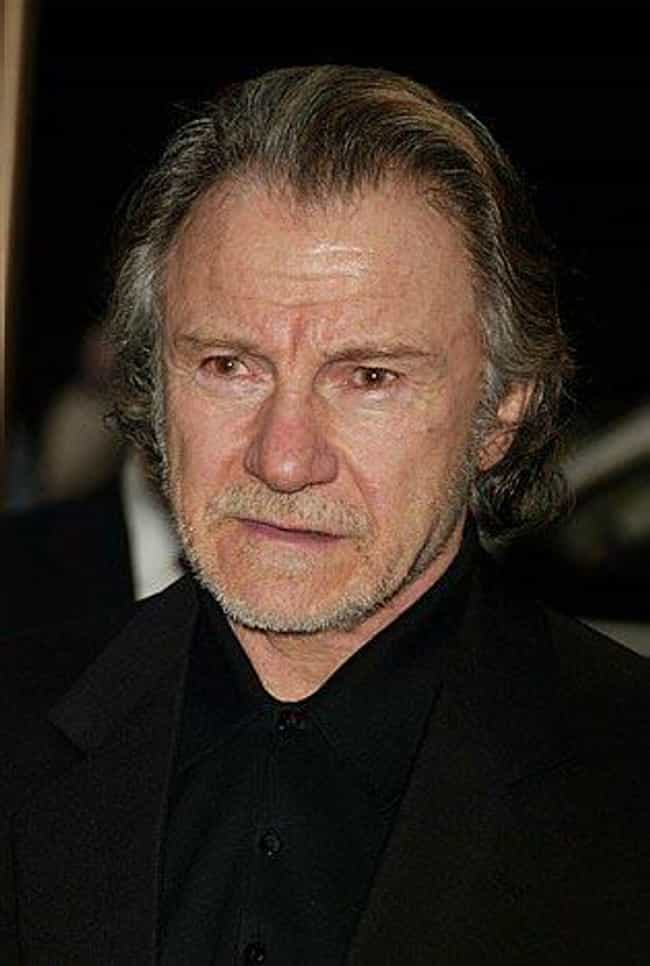 Harvey Keitel is listed (or ranked) 3 on the list Actors in the Most Quentin Tarantino Movies