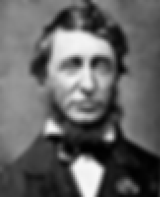 Henry David Thoreau is listed (or ranked) 1 on the list Famous Concord Academy Alumni