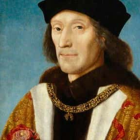Henry VII of England is listed (or ranked) 22 on the list Famous People Named Henry