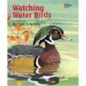 Water Birds is listed (or ranked) 10 on the list The Best Movies With Water in the Title