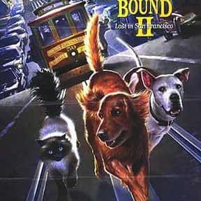 Homeward Bound II: Lost in San is listed (or ranked) 19 on the list The Funniest Movies About Animals