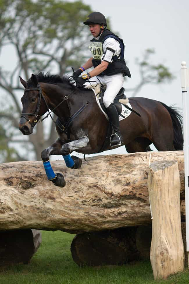Andreas Dibowski is listed (or ranked) 3 on the list Famous Male Equestrians