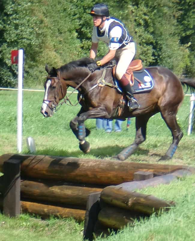 Frank Ostholt is listed (or ranked) 4 on the list Famous Male Equestrians