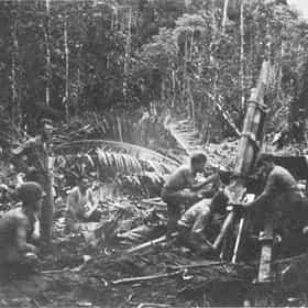 Battle of Wickham Anchorage