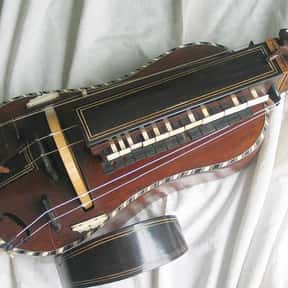 Hurdy gurdy is listed (or ranked) 8 on the list String instrument - Instruments in This Family