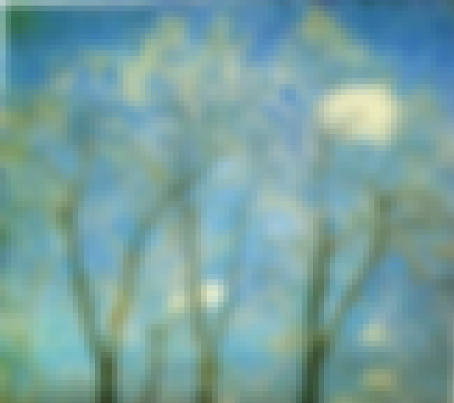 Acacias in Spring is listed (or ranked) 1 on the list Famous Landscape Arts from the Impressionism Movement