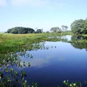 Ilha Grande National Park