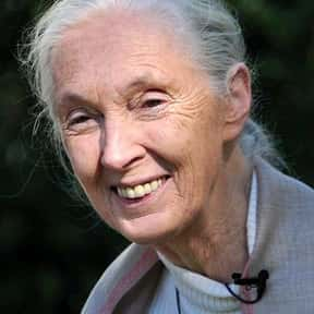 Jane Goodall is listed (or ranked) 6 on the list The Most Powerful Women Of All Time