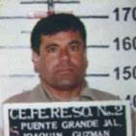 Joaquín Guzmán Loera
