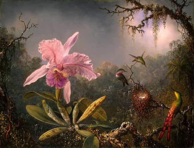 Cattleya Orchid and Thre... is listed (or ranked) 2 on the list Famous Landscape Arts by Martin Johnson Heade