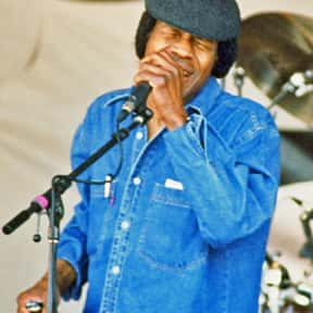 Junior Wells is listed (or ranked) 6 on the list The Best Chicago Blues Bands/Artists