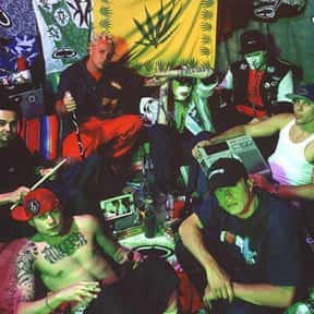 Kottonmouth Kings is listed (or ranked) 18 on the list California Reggae Bands List