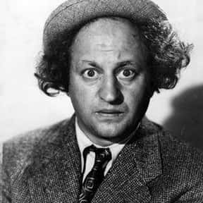 Larry Fine is listed (or ranked) 2 on the list Full Cast of Fright Night Actors/Actresses