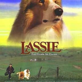 Lassie is listed (or ranked) 2 on the list The Best Adventure Movies for 10 Year Old Kids
