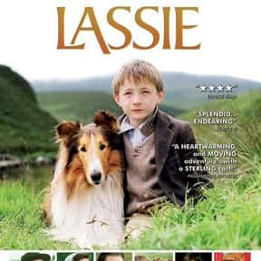Lassie is listed (or ranked) 22 on the list The Best Live Action Animal Movies for Kids