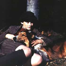 Lassie Come Home