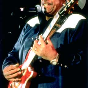 Lonnie Brooks is listed (or ranked) 23 on the list The Best Chicago Blues Bands/Artists