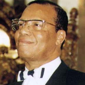 Louis Farrakhan is listed (or ranked) 2 on the list The Most Ridiculous Political Pundits