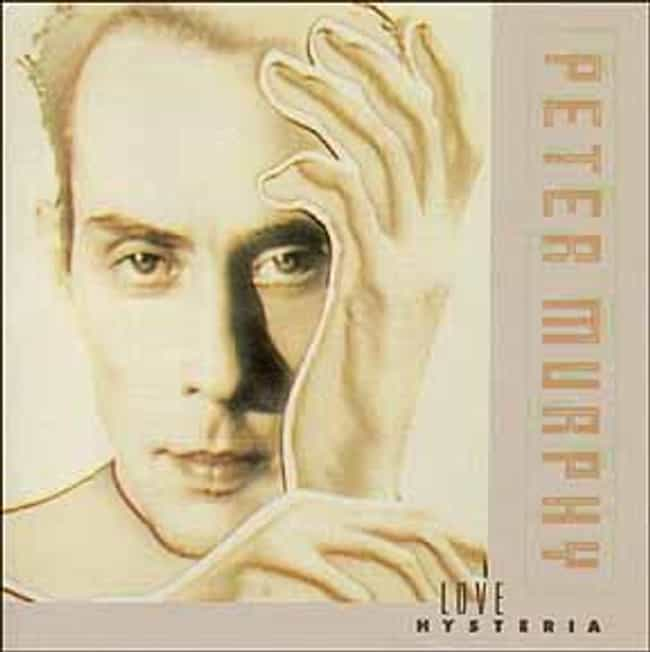 Love Hysteria is listed (or ranked) 2 on the list The Best Peter Murphy Albums of All Time