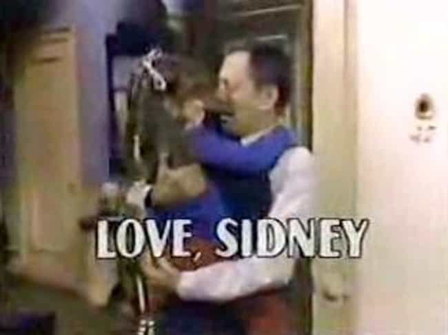Love, Sidney is listed (or ranked) 4 on the list TV Shows Produced By George Eckstein