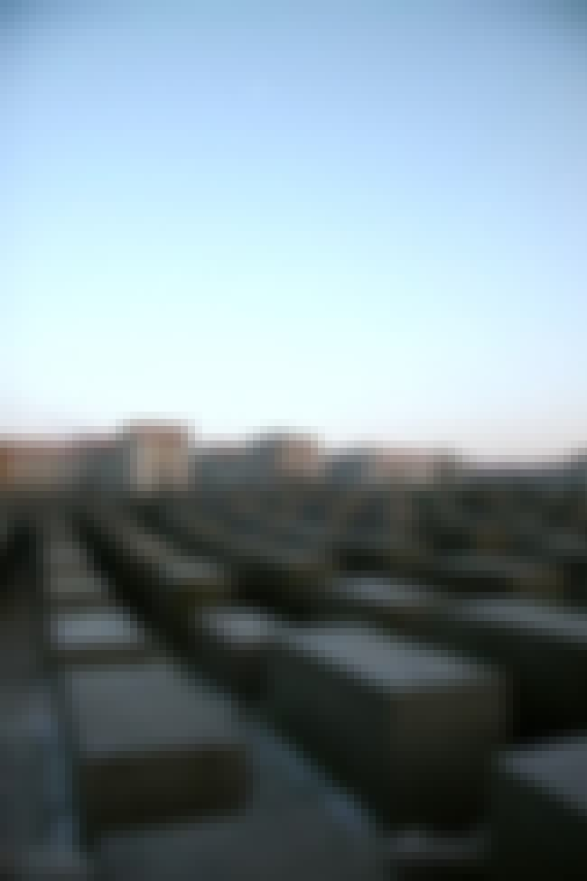 Memorial to the Murdered Jews ... is listed (or ranked) 4 on the list Peter Eisenman Architecture