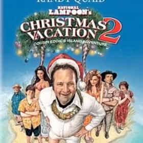 National Lampoon's Christmas Vacation 2