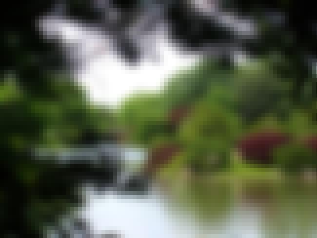 Missouri Botanical Garden is listed (or ranked) 3 on the list The Best American Flower Gardens/Botanical Gardens