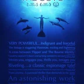 The Cove is listed (or ranked) 6 on the list Life-Changing Documentaries You've Got to See