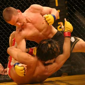 Mixed martial arts is listed (or ranked) 7 on the list The Most Popular Sports In America