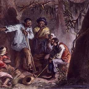 Nat Turner is listed (or ranked) 18 on the list Famous People Whose Last Name Is Turner