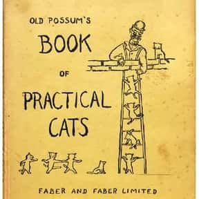 Old Possum's Book of Practical is listed (or ranked) 25 on the list The Best Cat Things