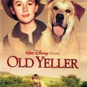 Old Yeller is listed (or ranked) 20 on the list The Best Disney Live-Action Movies