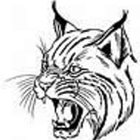 Oliver Springs High School is listed (or ranked) 11 on the list Bobcat Mascot School List