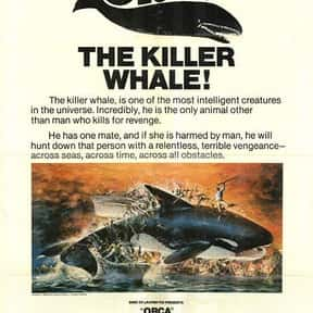 Orca is listed (or ranked) 21 on the list The Best '70s Disaster Movies