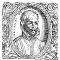 Orlande de Lassus is listed (or ranked) 29 on the list Famous Composers from the Netherlands