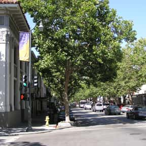 Palo Alto is listed (or ranked) 22 on the list The Best Day Trips from San Francisco